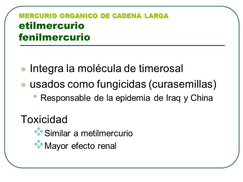 Integra la molécula de timerosal usados como fungicidas (curasemillas)