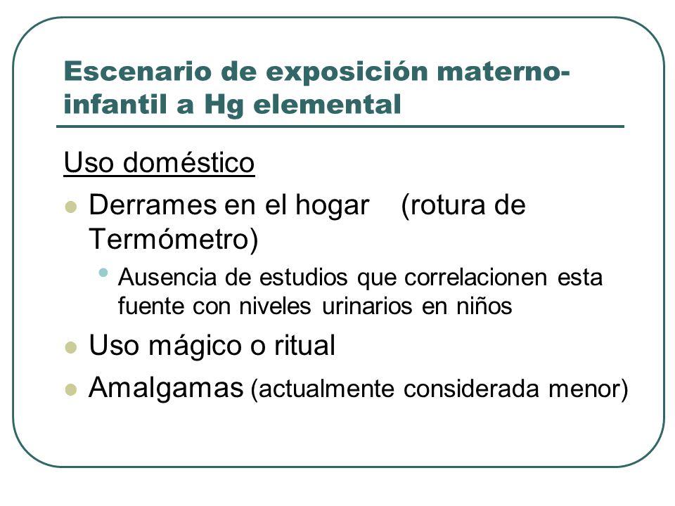 Escenario de exposición materno- infantil a Hg elemental