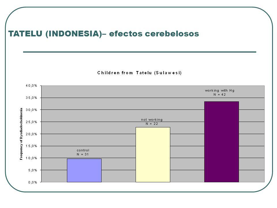TATELU (INDONESIA)– efectos cerebelosos