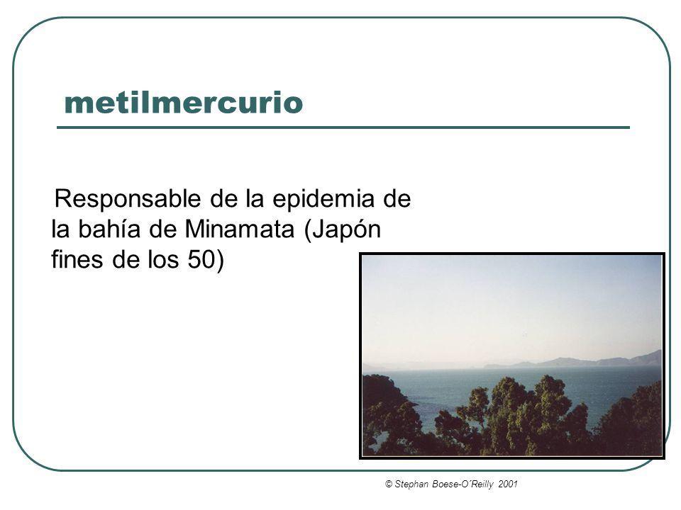 metilmercurio Responsable de la epidemia de la bahía de Minamata (Japón fines de los 50) © Stephan Boese-O´Reilly 2001.