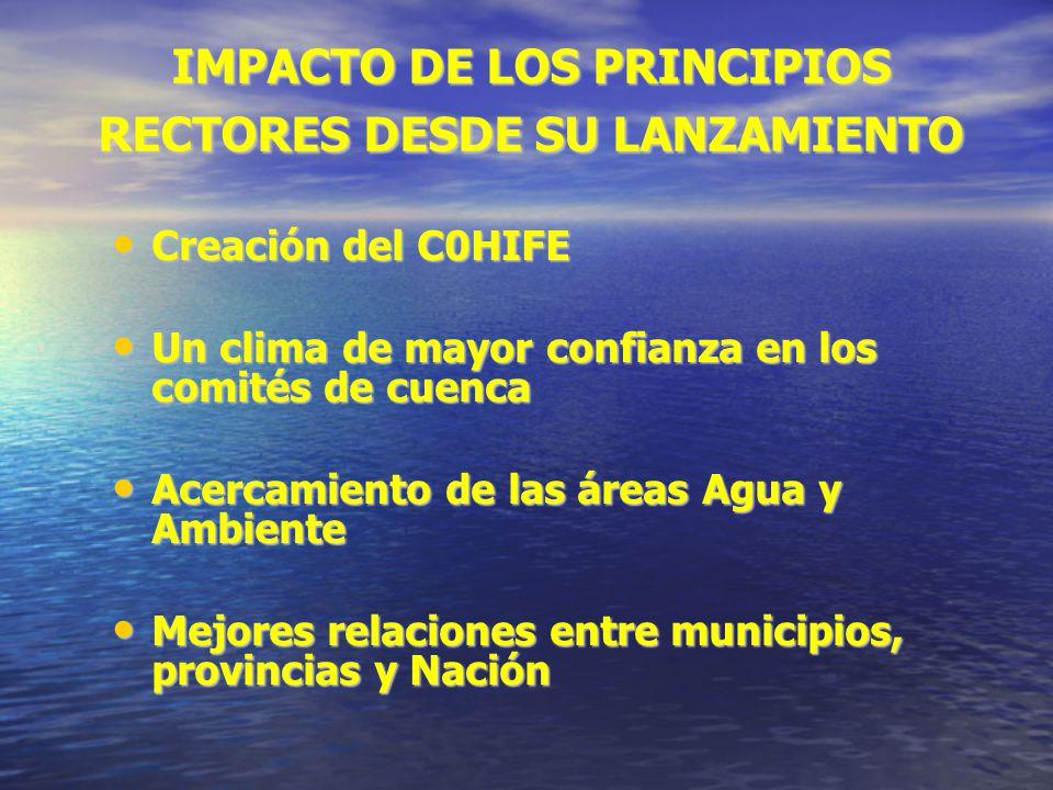 IMPACTO DE LOS PRINCIPIOS RECTORES DESDE SU LANZAMIENTO