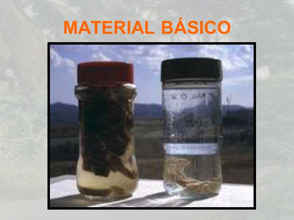 MATERIAL BÁSICO