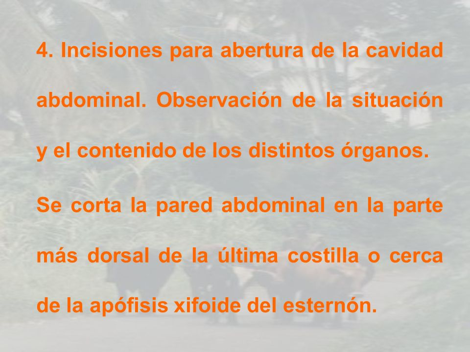 4. Incisiones para abertura de la cavidad abdominal