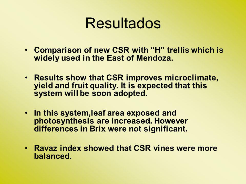 Resultados Comparison of new CSR with H trellis which is widely used in the East of Mendoza.