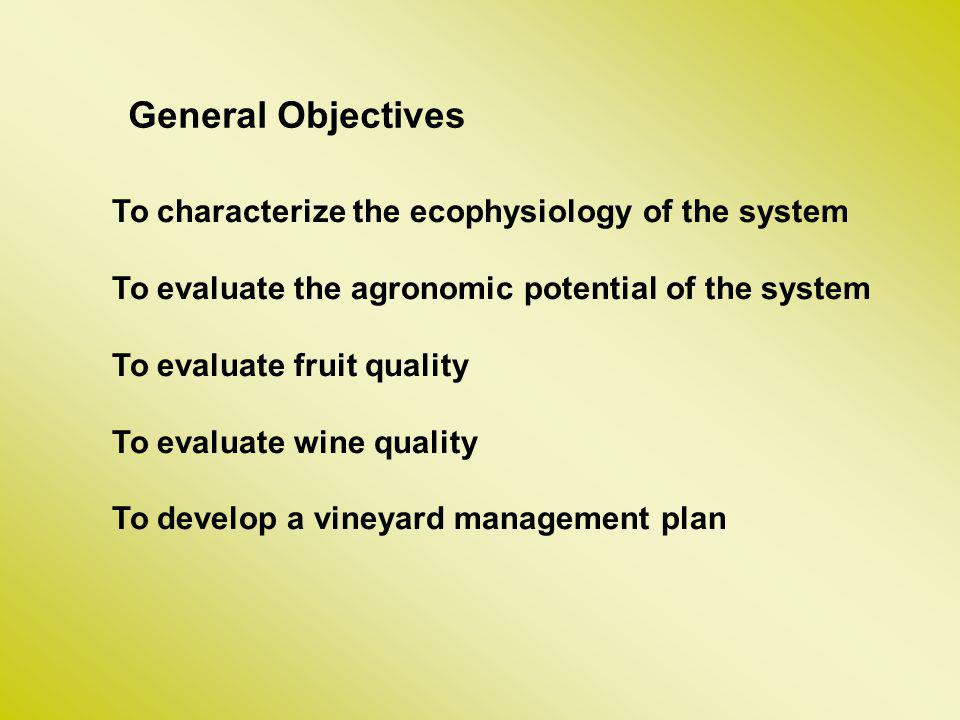 General Objectives To characterize the ecophysiology of the system