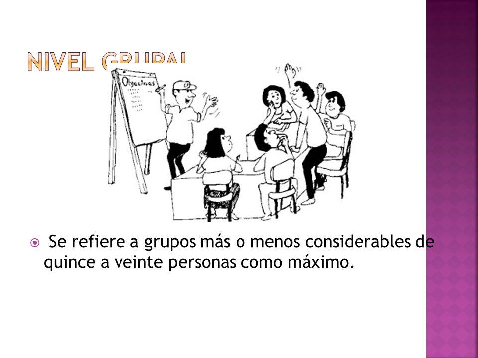 Nivel grupal Se refiere a grupos más o menos considerables de quince a veinte personas como máximo.