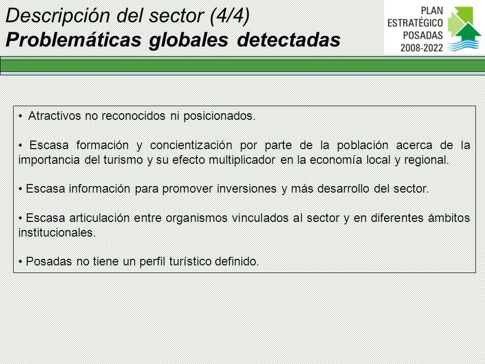 Descripción del sector (4/4) Problemáticas globales detectadas