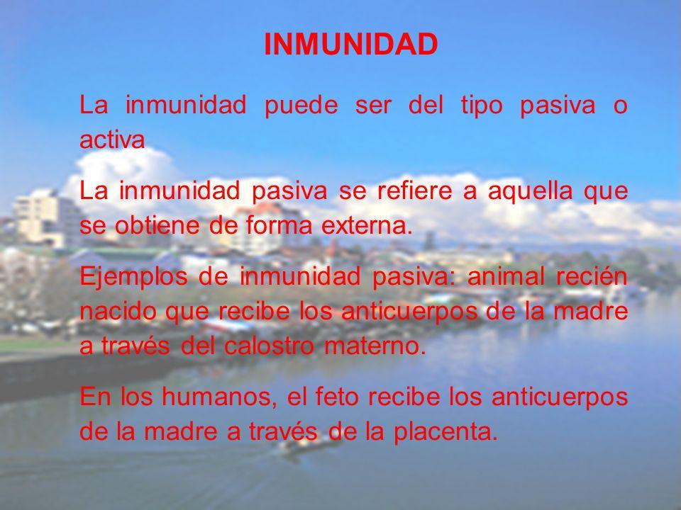 INMUNIDAD La inmunidad puede ser del tipo pasiva o activa