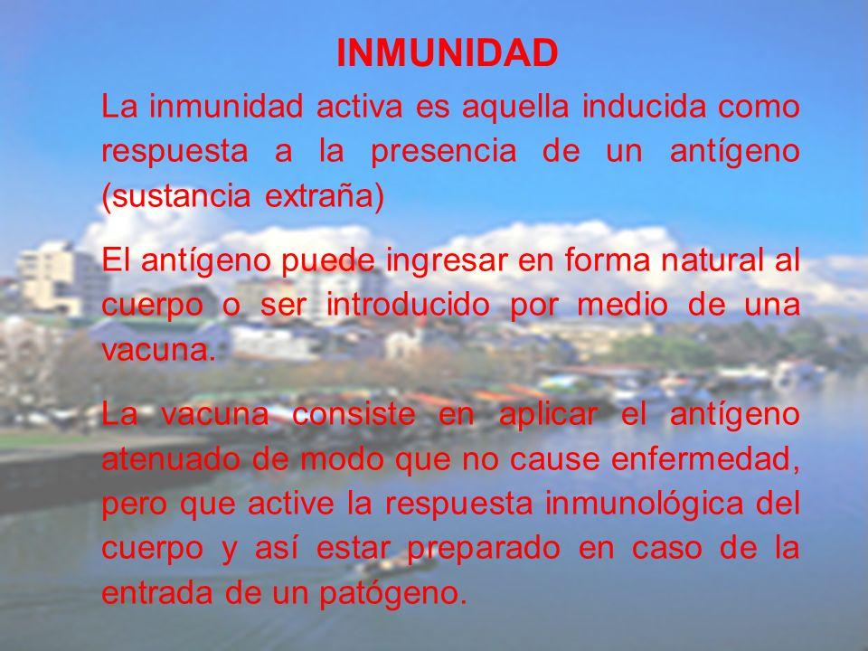 INMUNIDAD La inmunidad activa es aquella inducida como respuesta a la presencia de un antígeno (sustancia extraña)