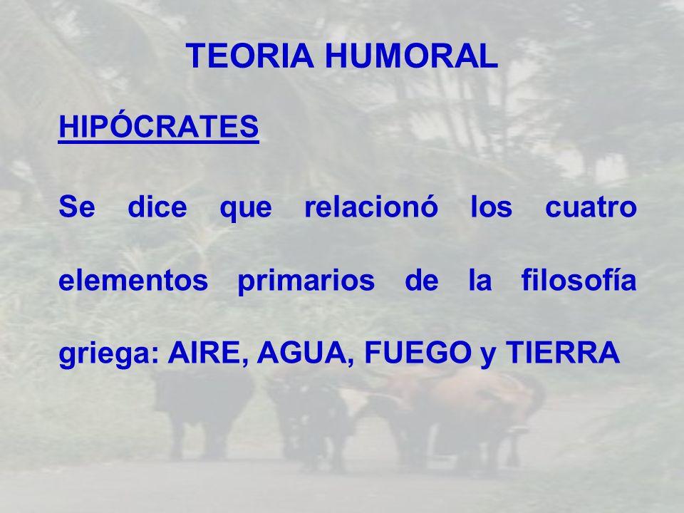 TEORIA HUMORAL HIPÓCRATES