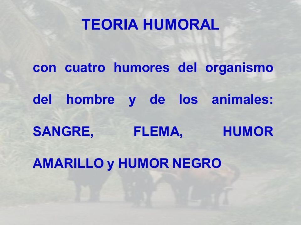 TEORIA HUMORAL con cuatro humores del organismo del hombre y de los animales: SANGRE, FLEMA, HUMOR AMARILLO y HUMOR NEGRO.