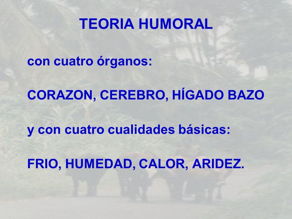 TEORIA HUMORAL con cuatro órganos: CORAZON, CEREBRO, HÍGADO BAZO