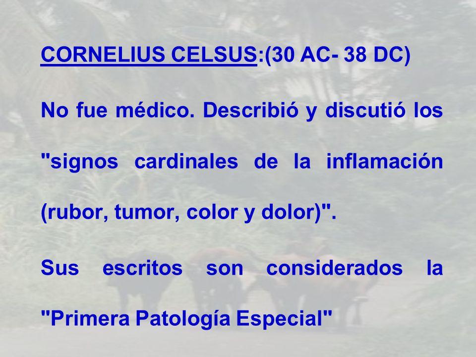 CORNELIUS CELSUS:(30 AC- 38 DC)