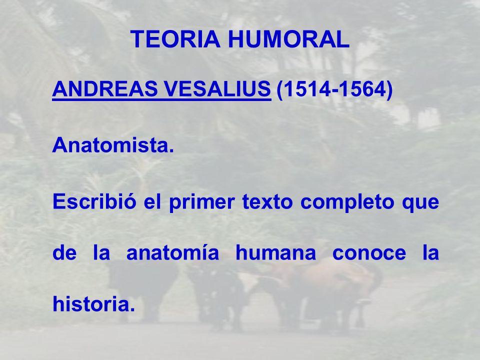 TEORIA HUMORAL ANDREAS VESALIUS (1514-1564) Anatomista.