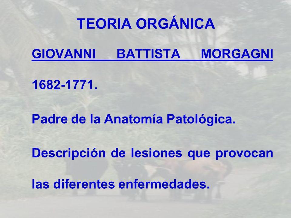 TEORIA ORGÁNICA GIOVANNI BATTISTA MORGAGNI 1682-1771.