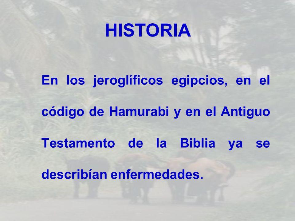 HISTORIAEn los jeroglíficos egipcios, en el código de Hamurabi y en el Antiguo Testamento de la Biblia ya se describían enfermedades.