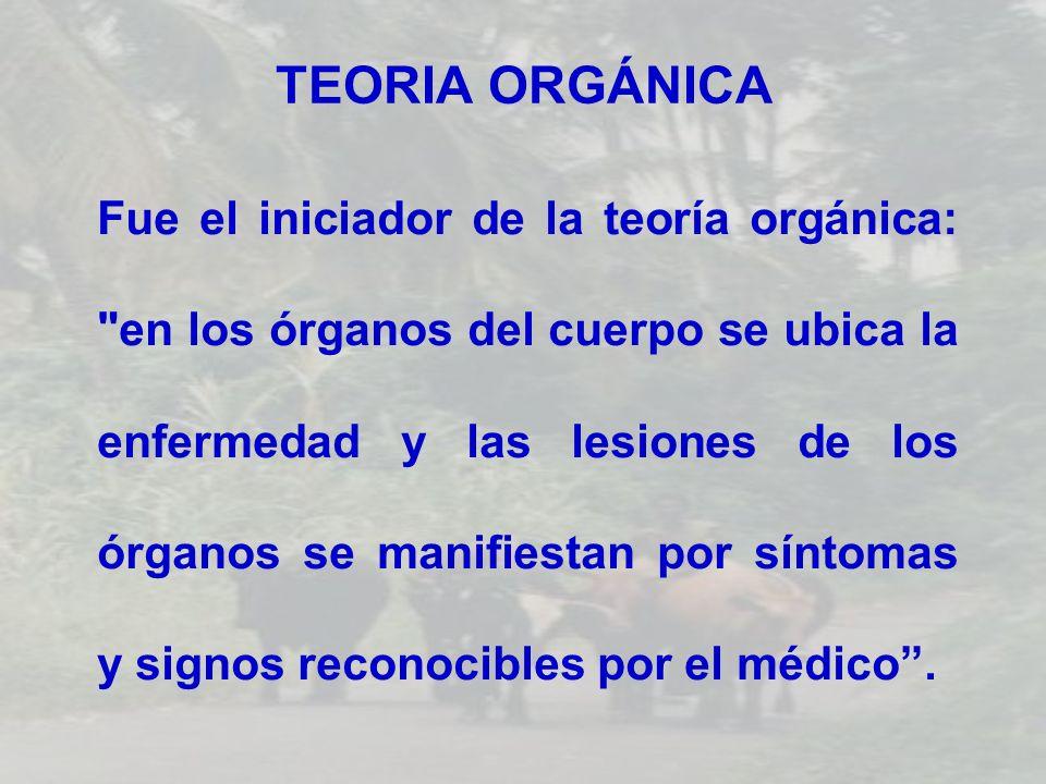 TEORIA ORGÁNICA