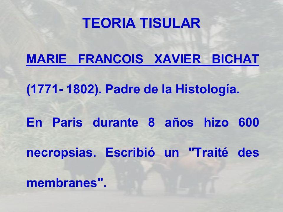 TEORIA TISULAR MARIE FRANCOIS XAVIER BICHAT (1771- 1802). Padre de la Histología.