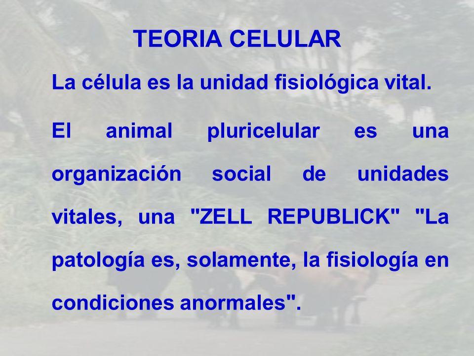 TEORIA CELULAR La célula es la unidad fisiológica vital.