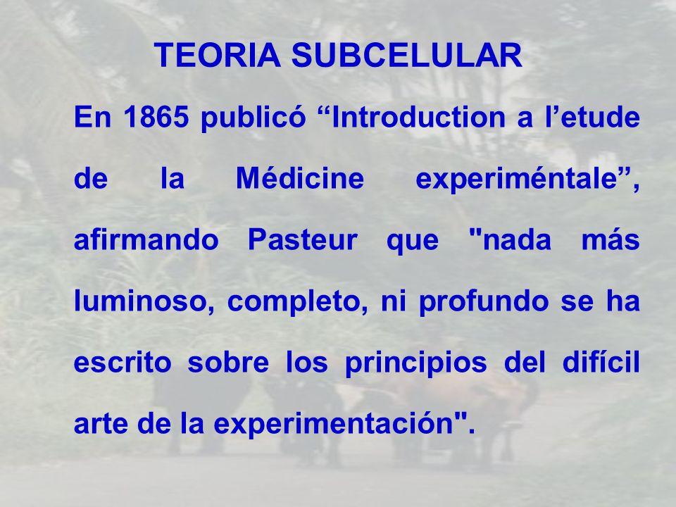 TEORIA SUBCELULAR