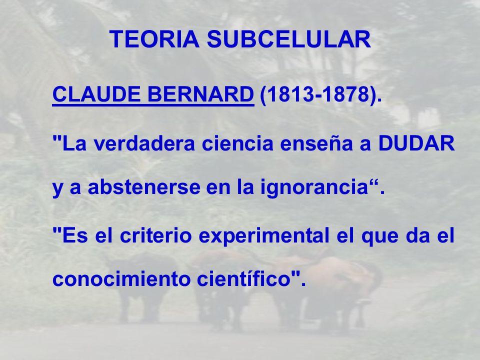 TEORIA SUBCELULAR CLAUDE BERNARD (1813-1878).