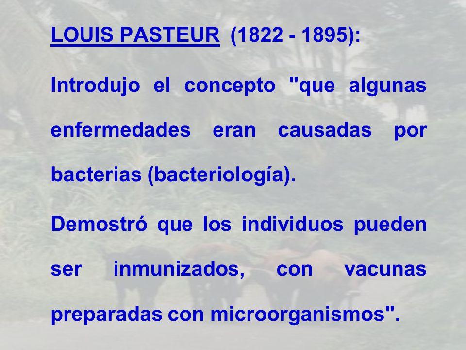 LOUIS PASTEUR (1822 - 1895): Introdujo el concepto que algunas enfermedades eran causadas por bacterias (bacteriología).
