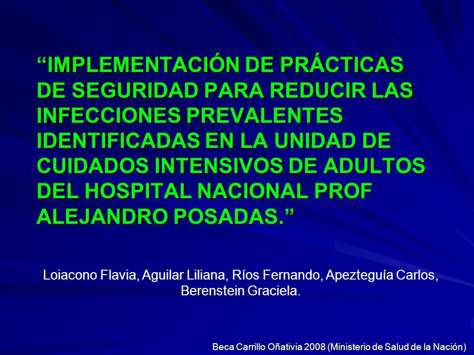 Beca Carrillo Oñativia 2008 (Ministerio de Salud de la Nación)