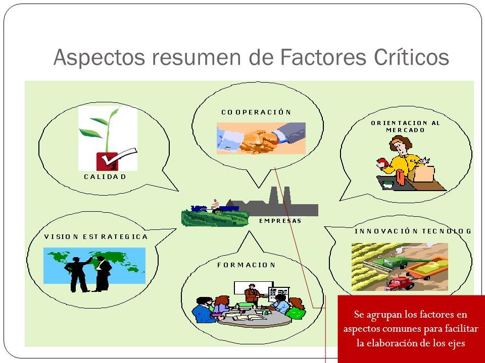 Aspectos resumen de Factores Críticos
