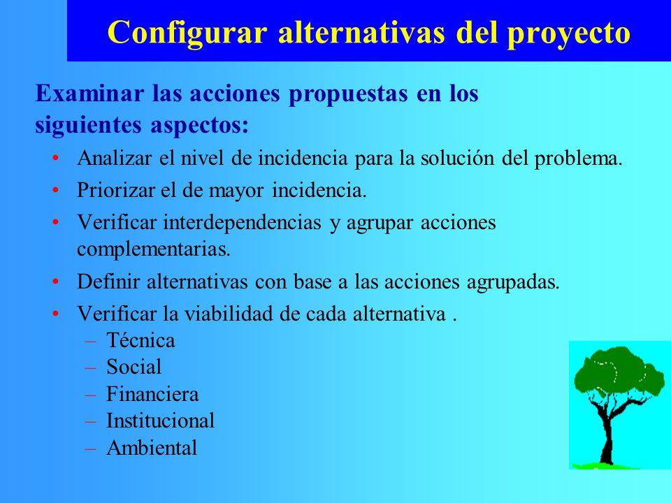 Configurar alternativas del proyecto