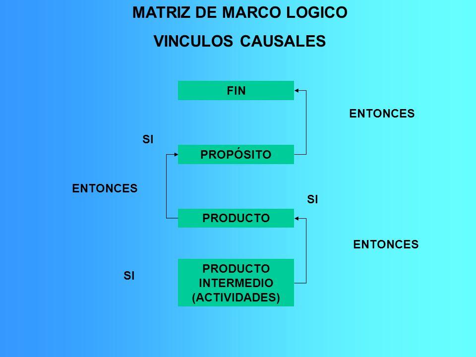 PRODUCTO INTERMEDIO (ACTIVIDADES)