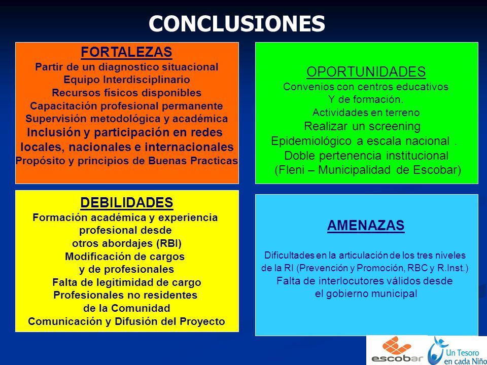 CONCLUSIONES FORTALEZAS OPORTUNIDADES DEBILIDADES AMENAZAS