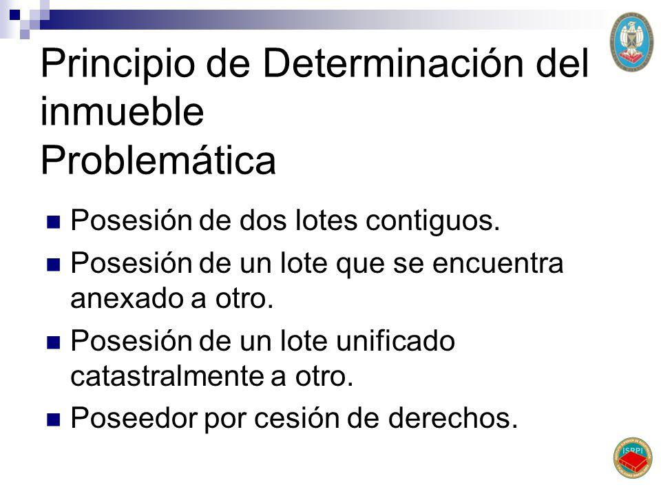 Principio de Determinación del inmueble Problemática