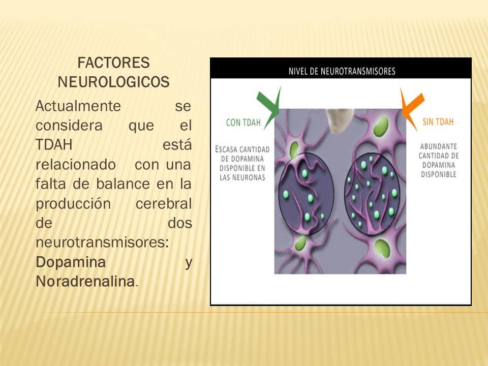 FACTORES NEUROLOGICOS