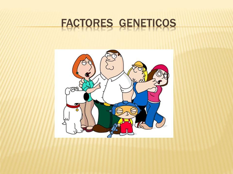 FACTORES GENETICOS