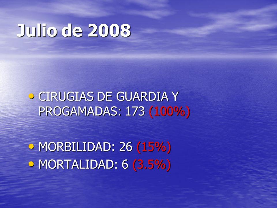 Julio de 2008 CIRUGIAS DE GUARDIA Y PROGAMADAS: 173 (100%)