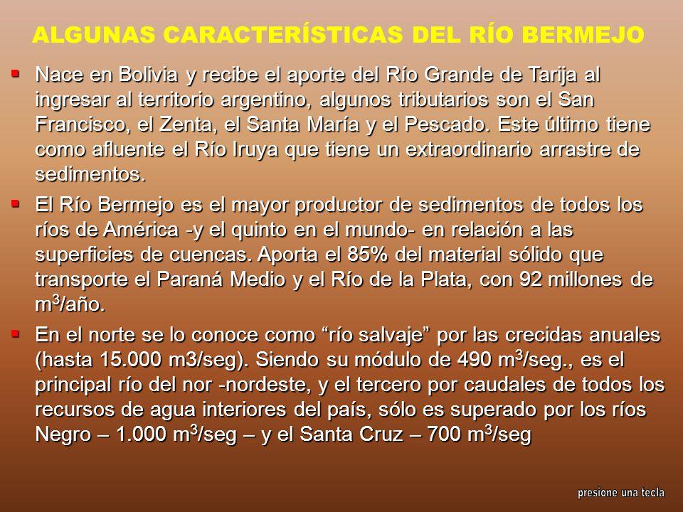 ALGUNAS CARACTERÍSTICAS DEL RÍO BERMEJO