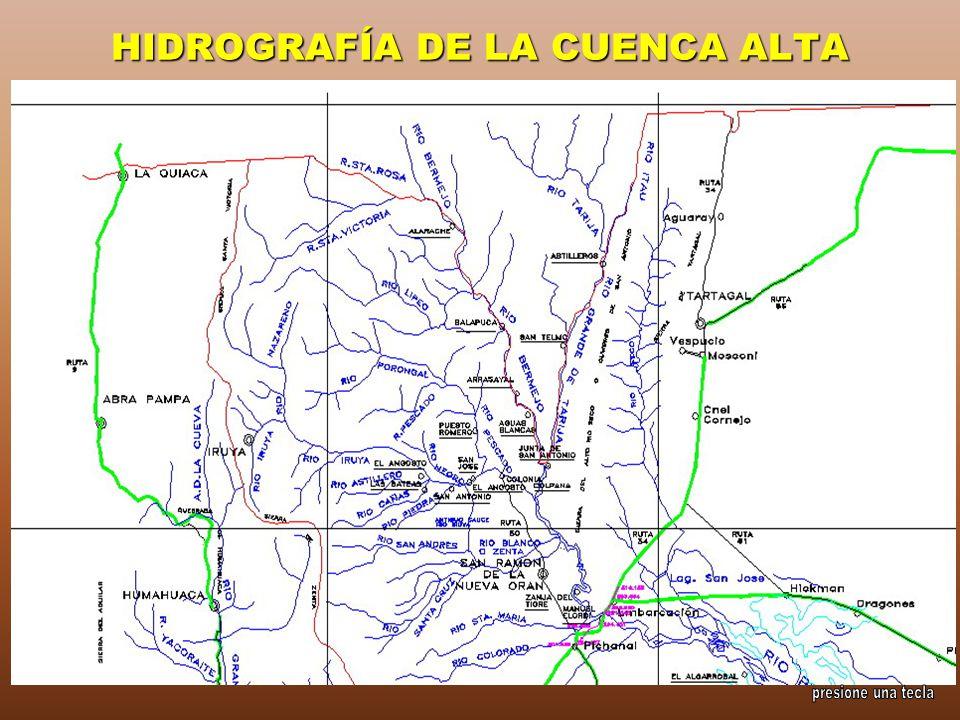 HIDROGRAFÍA DE LA CUENCA ALTA