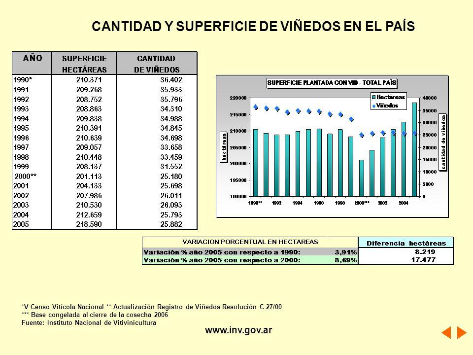 CANTIDAD Y SUPERFICIE DE VIÑEDOS EN EL PAÍS