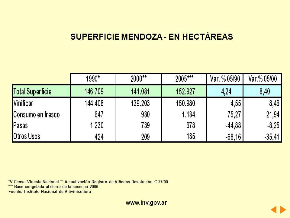 SUPERFICIE MENDOZA - EN HECTÁREAS