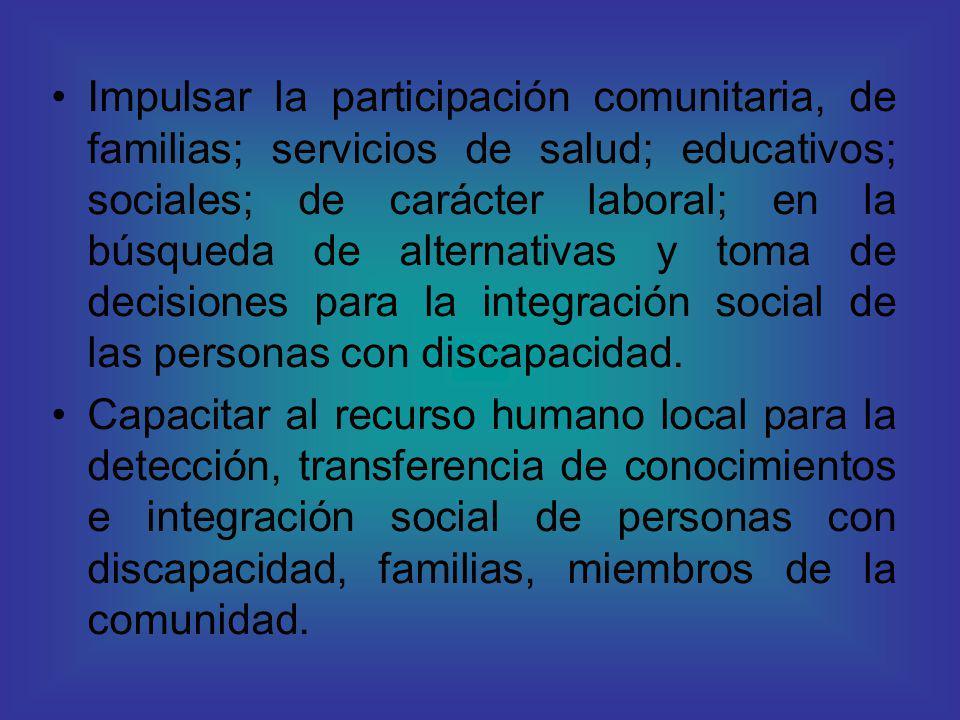 Impulsar la participación comunitaria, de familias; servicios de salud; educativos; sociales; de carácter laboral; en la búsqueda de alternativas y toma de decisiones para la integración social de las personas con discapacidad.