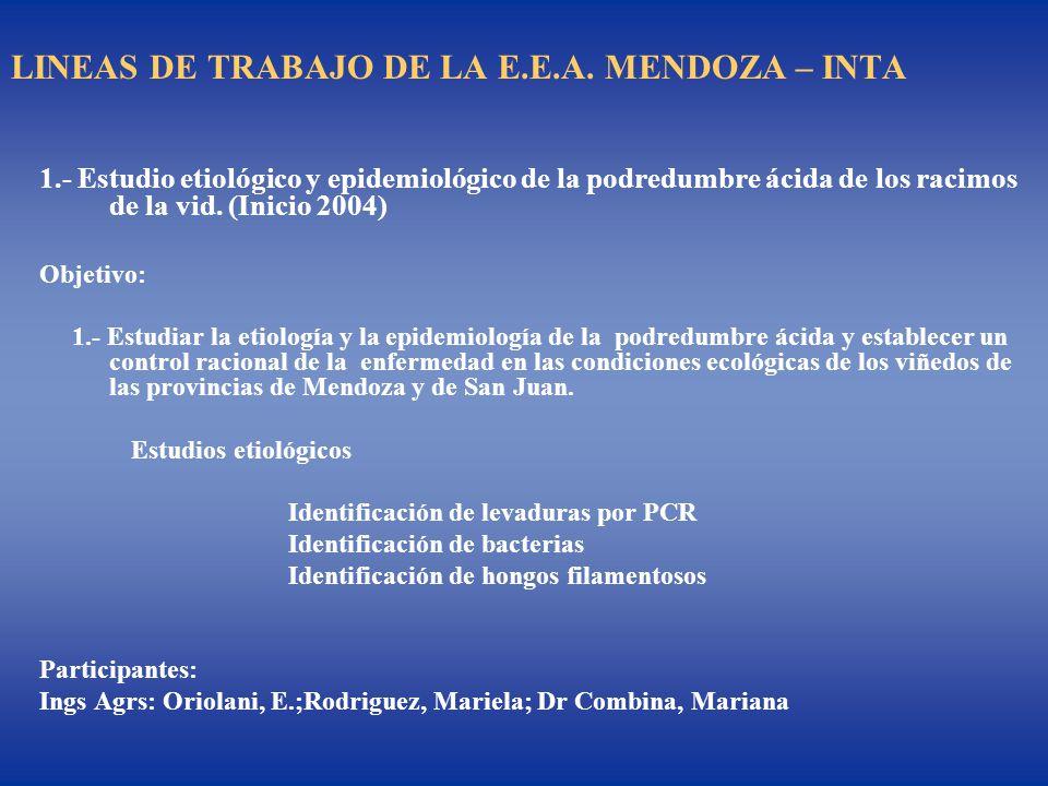 LINEAS DE TRABAJO DE LA E.E.A. MENDOZA – INTA