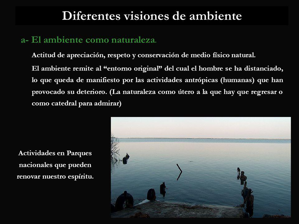 Diferentes visiones de ambiente