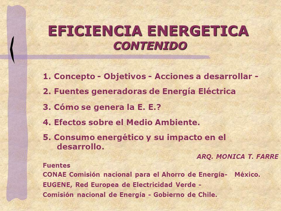 EFICIENCIA ENERGETICA CONTENIDO