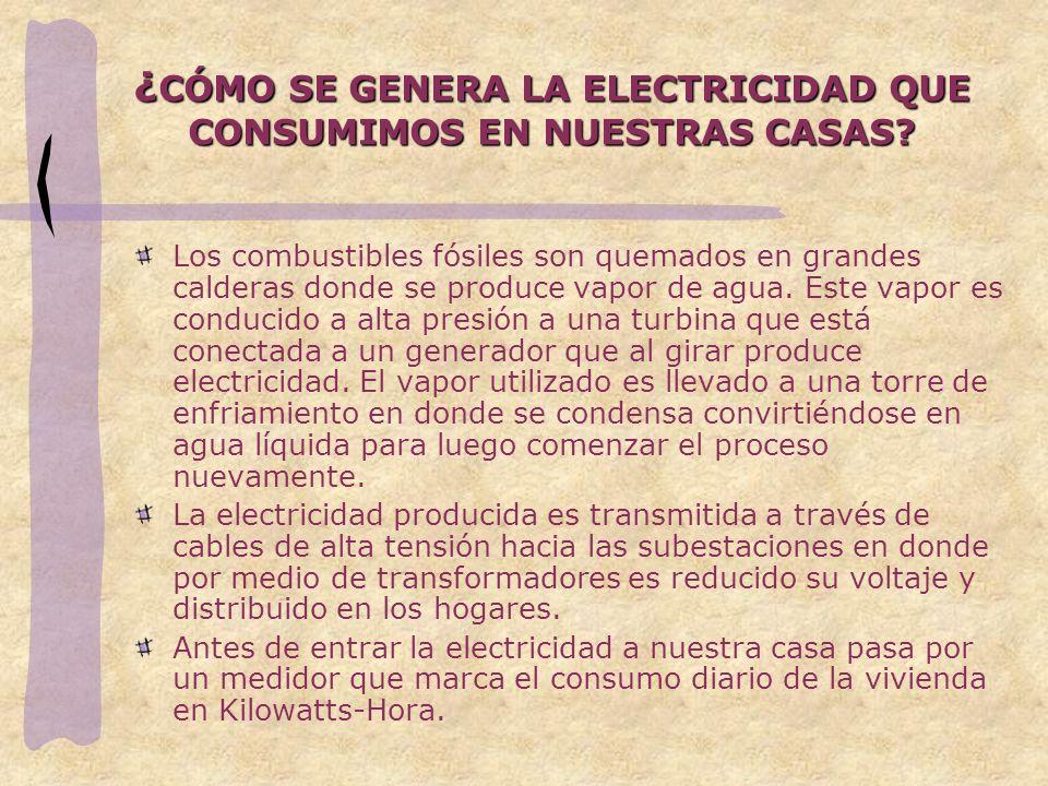 ¿CÓMO SE GENERA LA ELECTRICIDAD QUE CONSUMIMOS EN NUESTRAS CASAS
