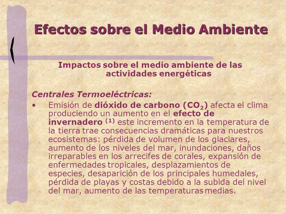 Efectos sobre el Medio Ambiente
