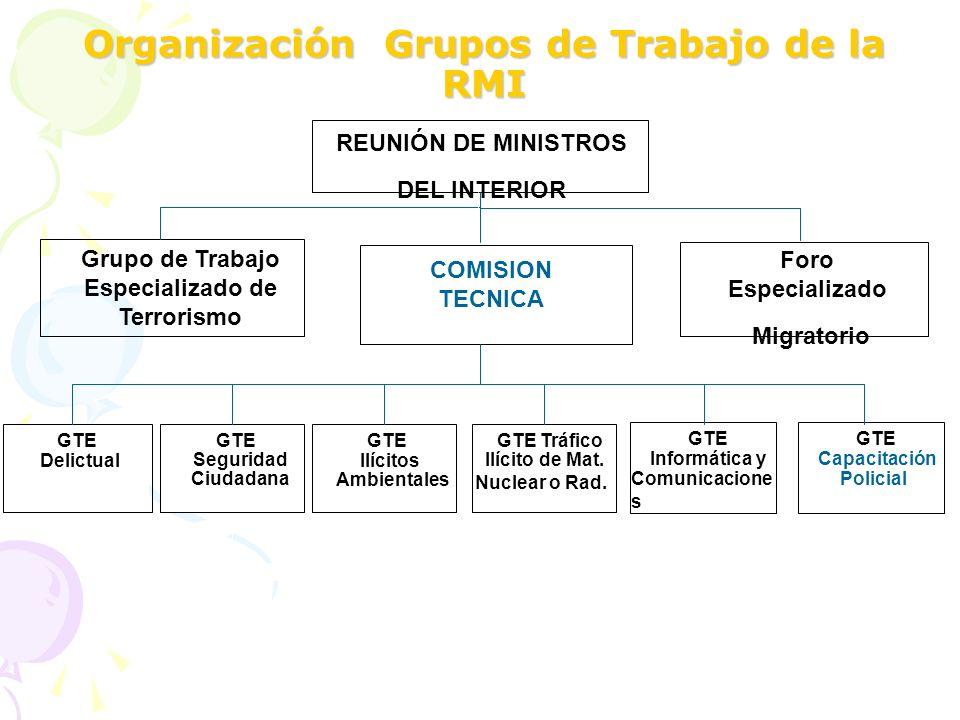 Organización Grupos de Trabajo de la RMI