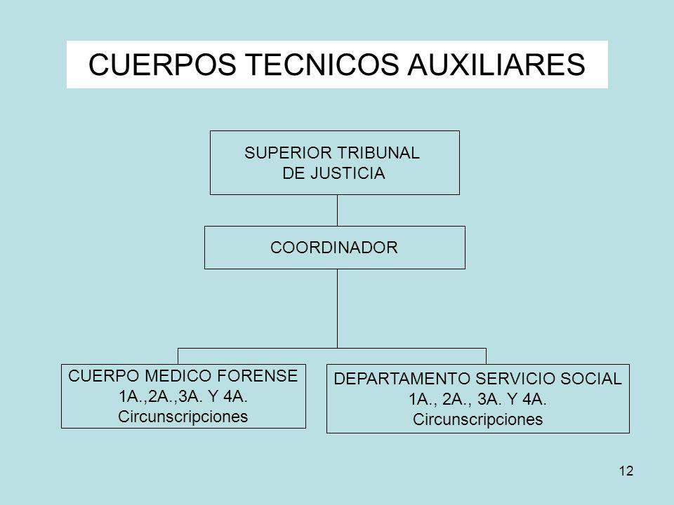CUERPOS TECNICOS AUXILIARES