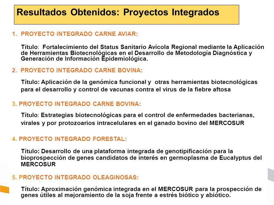 Resultados Obtenidos: Proyectos Integrados