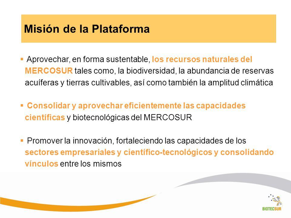 Misión de la Plataforma