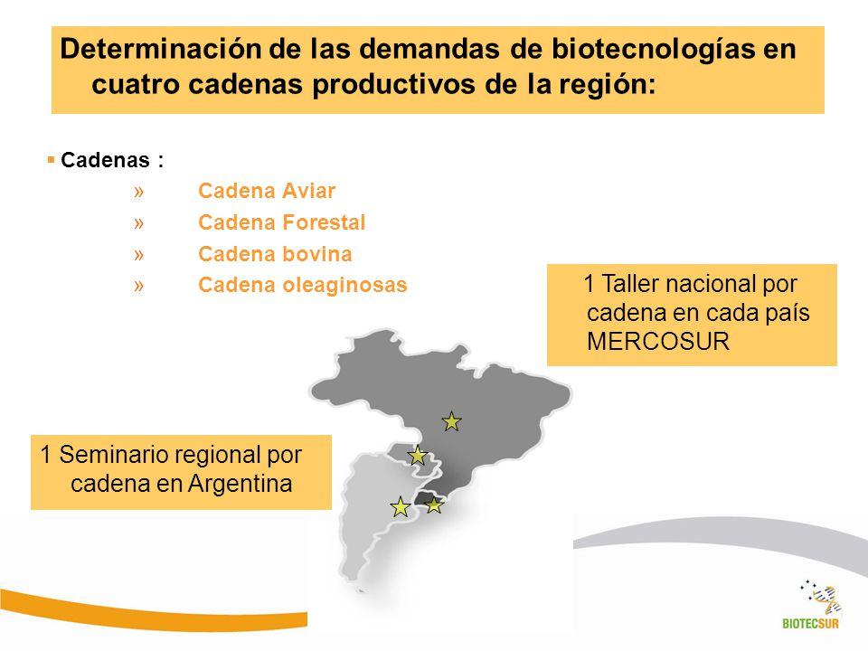 Determinación de las demandas de biotecnologías en cuatro cadenas productivos de la región: